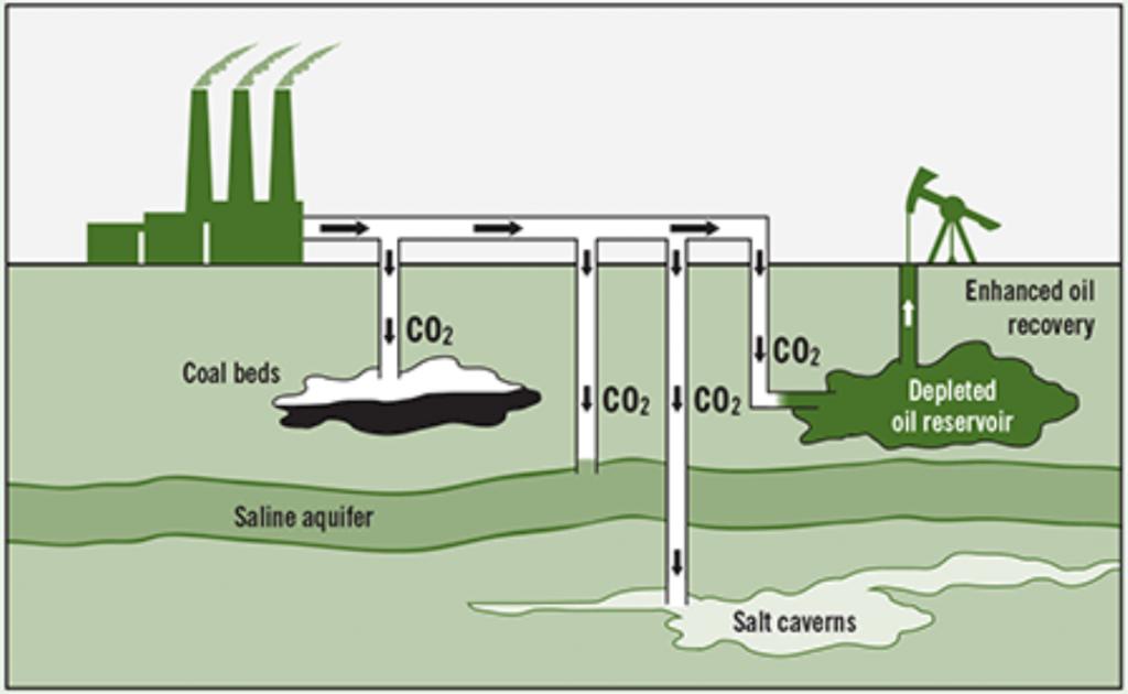 Carbon Storage reservoir