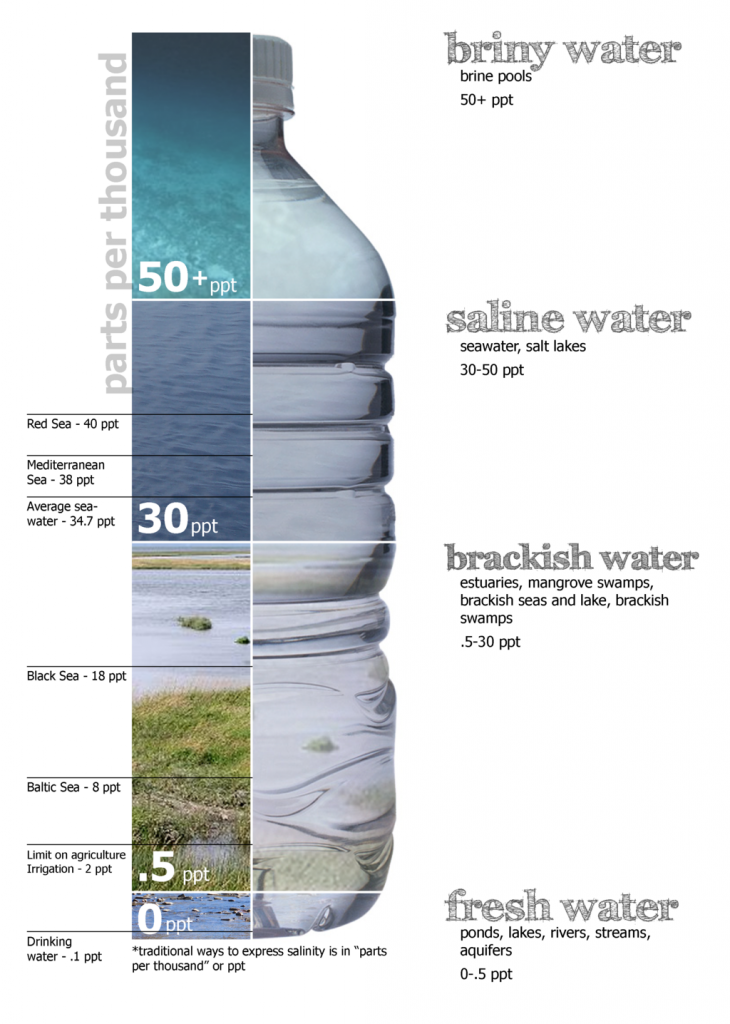 Water Salinity levels Diagram